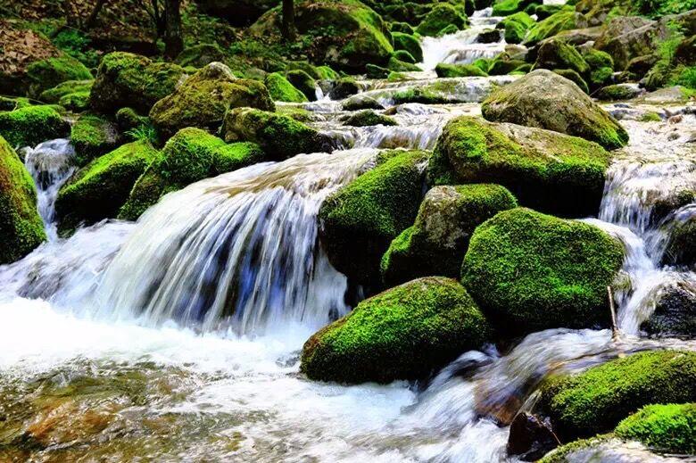 小溪流水.jpg